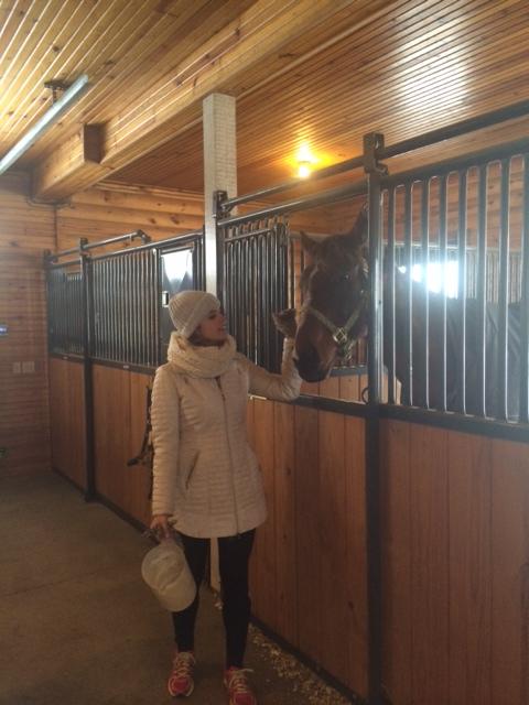 lizzie horse