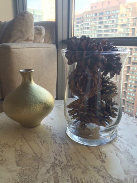 pinecones2