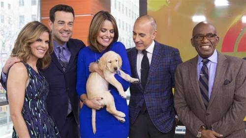 today show pup